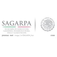 img_sagarpa